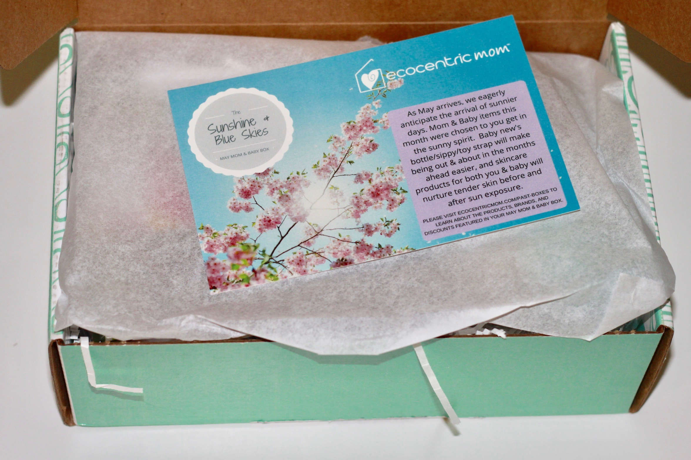 Ecocentric Mom & Baby Box Review - May 2017