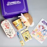 YumeTwins Kawaii Subscription Box Review