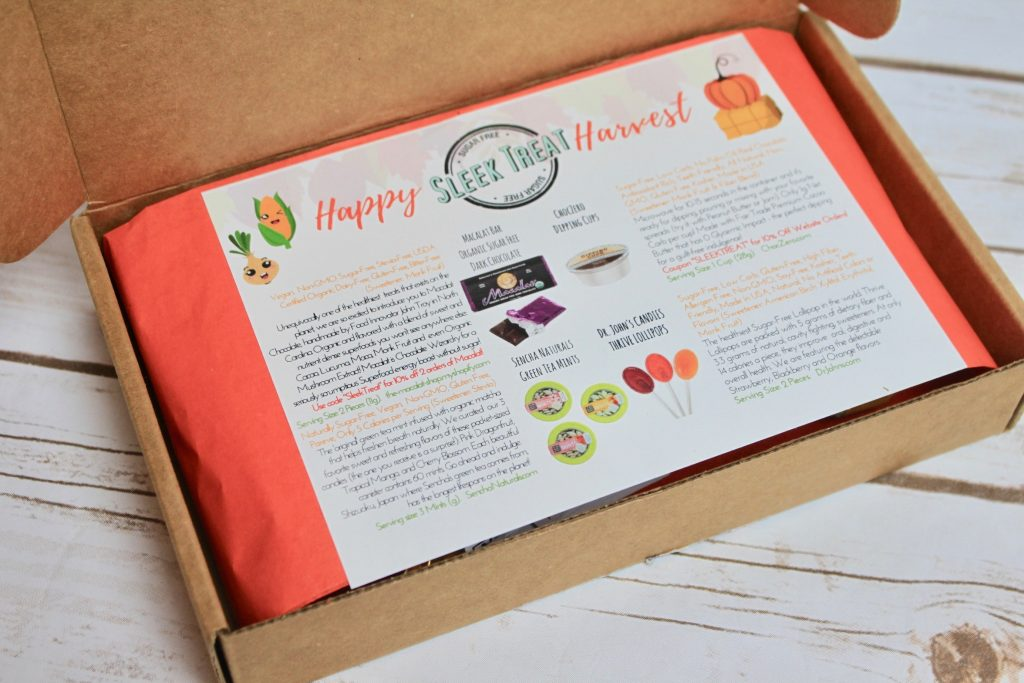 Sleek Treat November 2017 Subscription Box Review