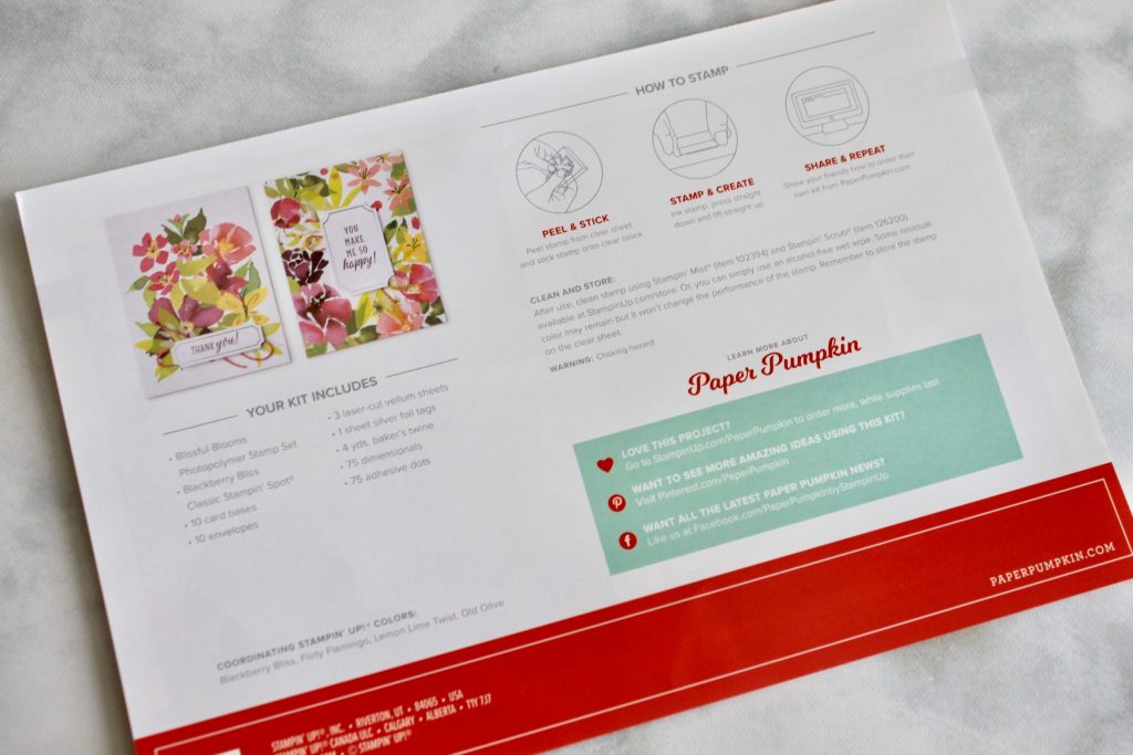 Paper Pumpkin August 2018 Subscription Review